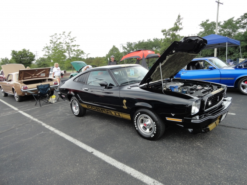 Car Show Columbus Ohio 2014 as well Car Shows In Cincinnati additionally Car Show Official World Famous Blue Crab Festival Event furthermore Ohio Events Car Auctions Swap Meets Motorcycle Shows Event additionally Buck Bumble. on ohio car shows and swap meets 2017
